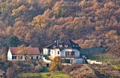 2010 - Rezidencia v Svätom Juri